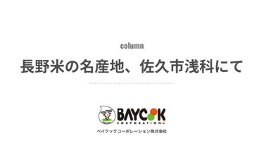 長野米の名産地、佐久市浅科にて。『五郎兵衞用水』の先人と新規就農した青年 ベイクックの長野米コラム