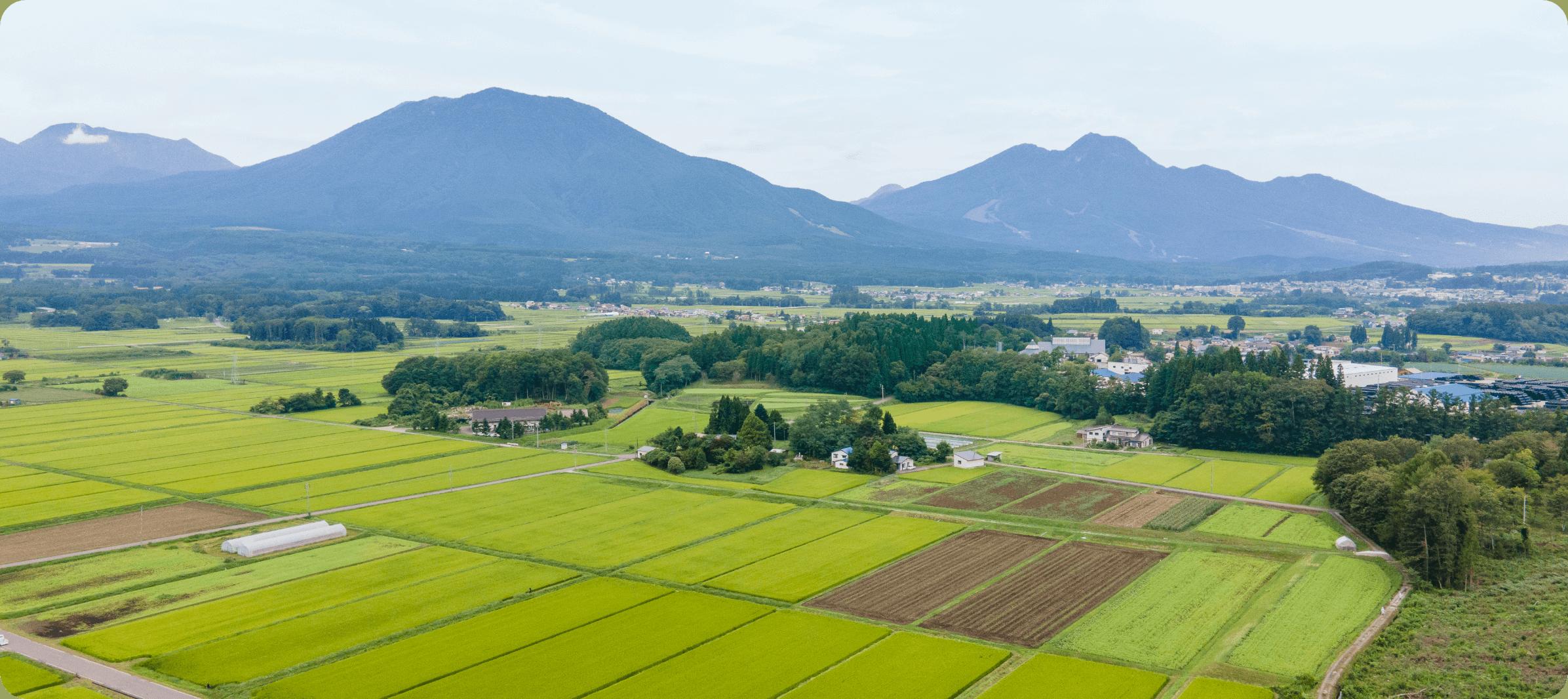 長野の田園風景|長野米の品質とベイクックの役割