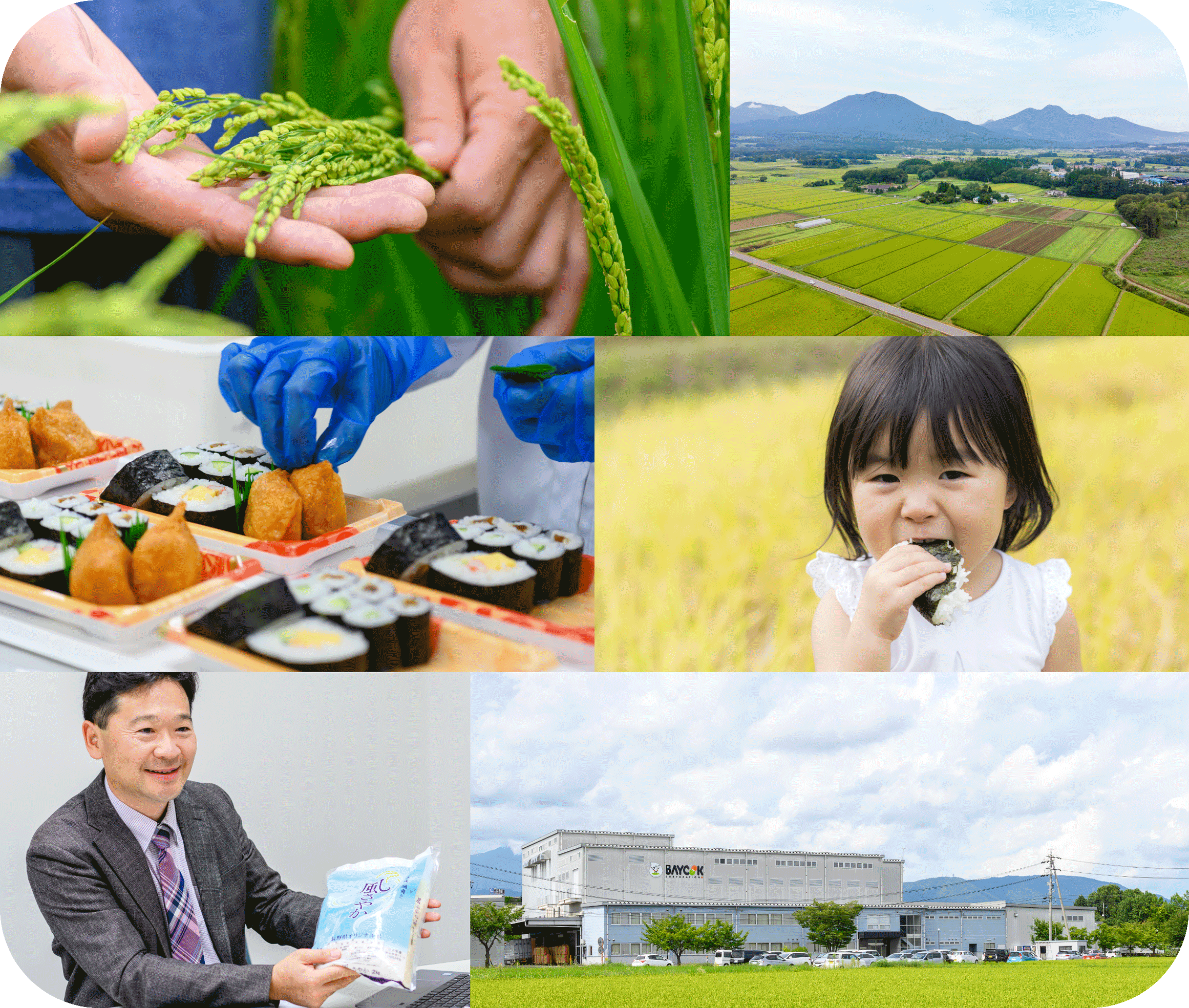 全国トップレベルの長野米を届けるベイクックコーポレーション